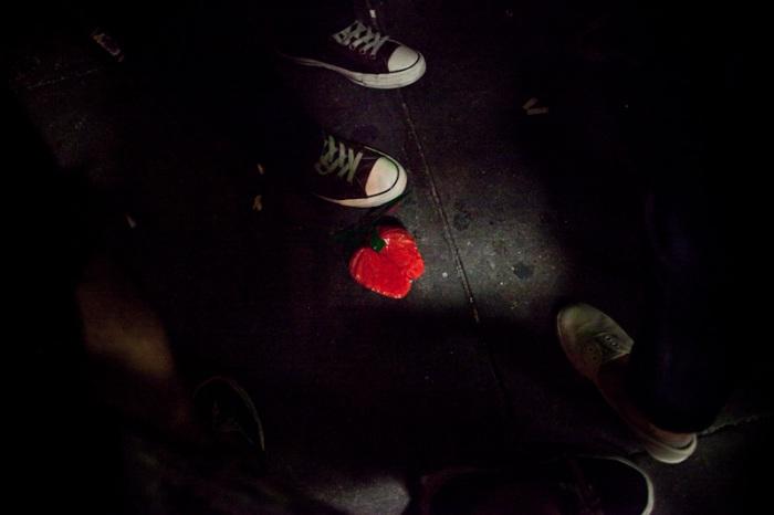 strawberry-95